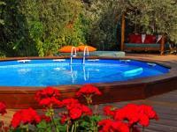 החצר והבריכה
